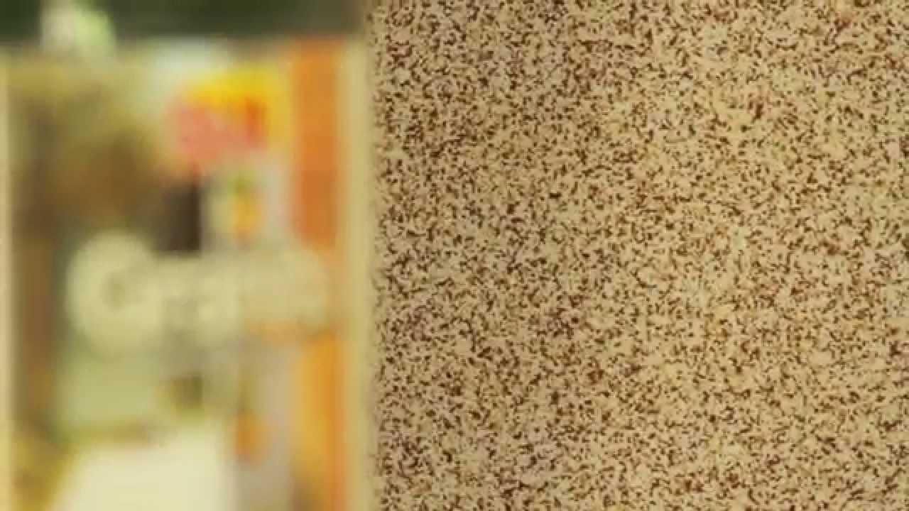 Revestimiento texturizado granito youtube for Pintura texturada para exterior
