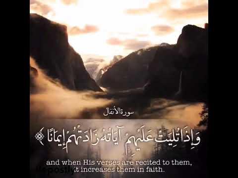 Islamic whatsapp status video download free