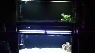 Double Aquarium Stand 55 Gallon