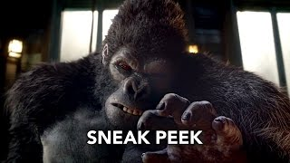 "The Flash 2x07 Sneak Peek #2 ""Gorilla Warfare"" (HD)"