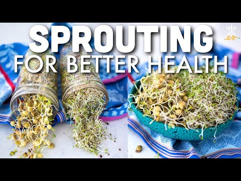 The Healthiest & Cheapest Superfood: Sprouting How-To w/ Doug Evans
