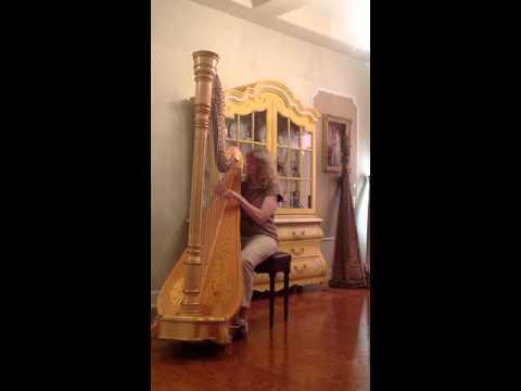 Venus Encore Pedal Harp for sale. Contact mekoharpmusic@gmail.com