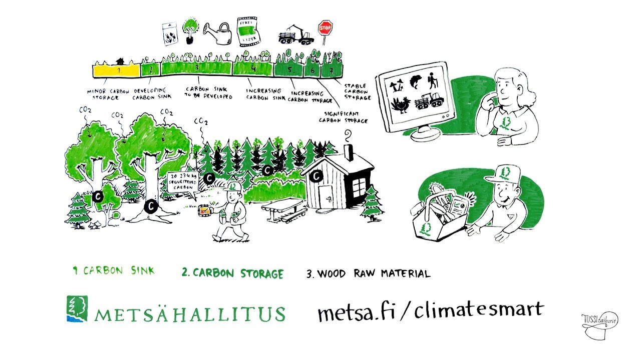 Metsahallitus Climate Smart Forestry
