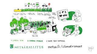 Metsahallitus Climate Smart Forestry