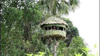 Build An AMazing Round Hut Around Palmyra Palm Tree - Round House Making By Smart Village Boys