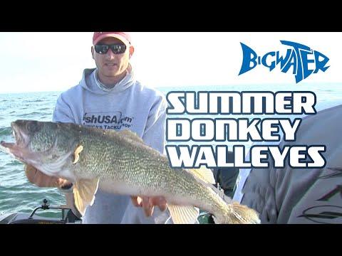 Catchin' Donkeys - Walleye Fishing On Lake Erie