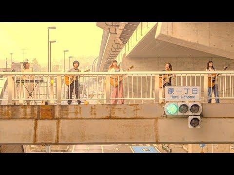 若者のすべて / フジファブリック【歌詞付】|Cover|MV|PV|FULL