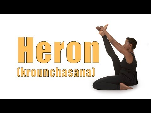 how you can do heron pose krounchasana in yoga  fitness