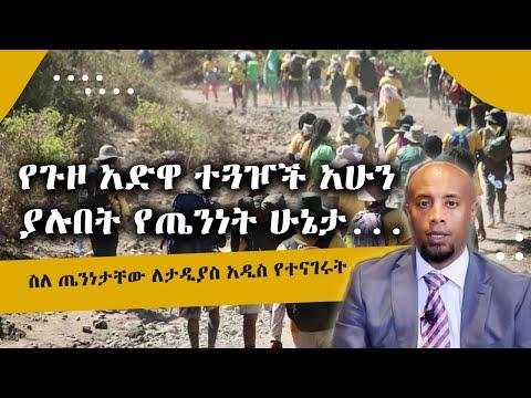 5 የጉዞ አድዋ ተጓዦች ከከፍተኛ ህመም አገገሙ ....አሁን ያሉበት የጤንነት ሁኔታ l Tadias Addis