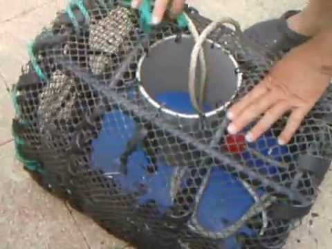 Fabrication casier a crabe partie 2 youtube - Fabriquer un casier a bouteille ...
