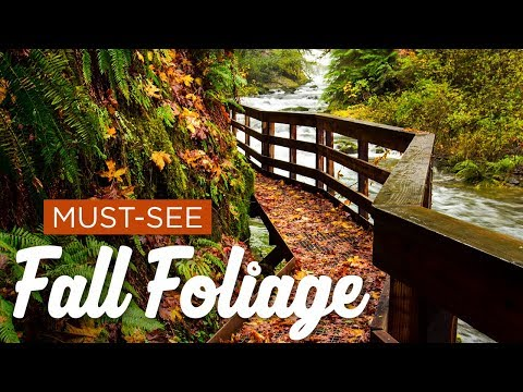 Most Underrated Places For Fall Foliage In America