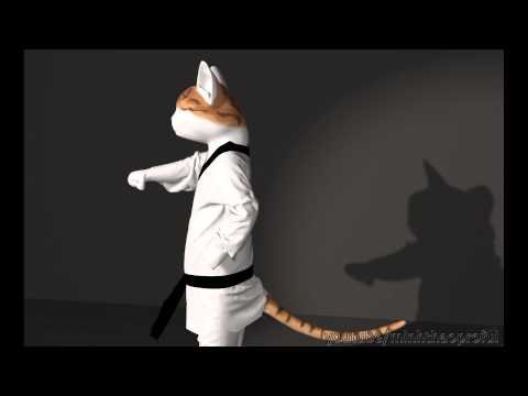 [Hoạt hình 3D ngắn] Teakwondo cat