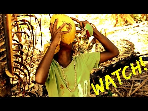 TI TAK KOKO - Motto (Official Music Video) NEW St Lucia Creole Soca - Fox Production Films