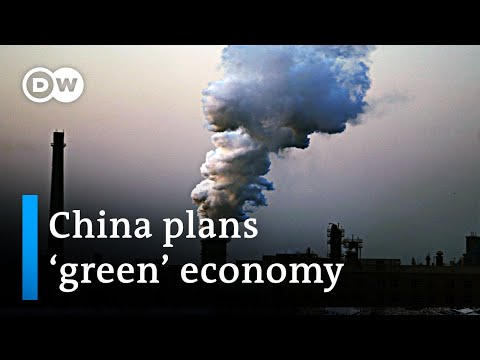 President Xi Jinping talks up plans for a 'green economy' in China | Business News