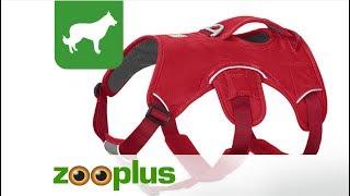 Ruffwear Web Master Dog Harness Red | zooplus.co.uk