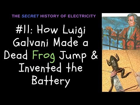 How Luigi Galvani's Frog Leg Experiment Made a Dead Frog Jump & Invented the Battery