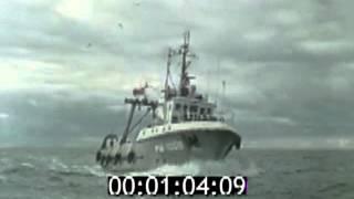 1979. Рыболовецкий колхоз  Sarkana baka
