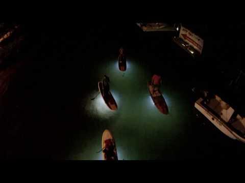 Night Paddle Tour in Key West Florida