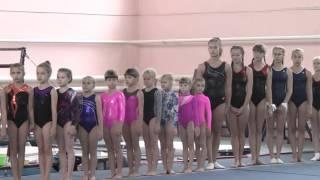Чемпионат области по спортивной гимнастике