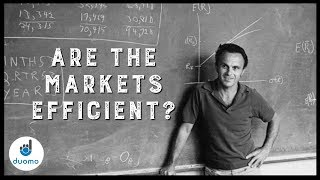 Are Markets Efficient? (Discussing the Efficient Market Hypothesis)