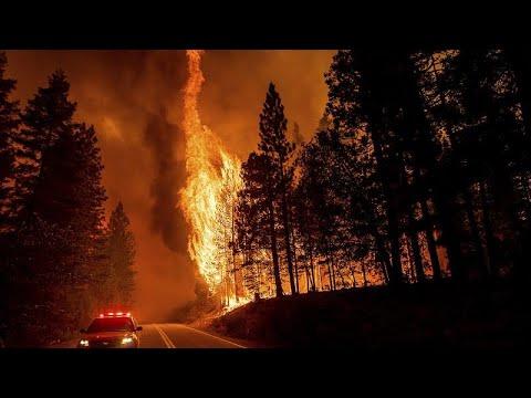 شاهد: محاولات جوية لاحتواء حريق اندلع بغابة في كاليفورنيا…