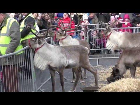 Beverley Christmas Market 2015