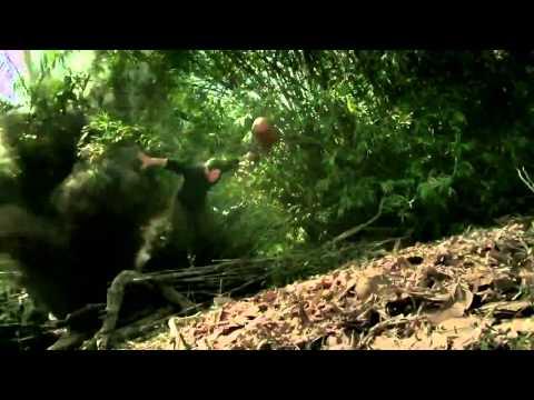 Ниндзя 2 / NINJA II   Shadow Of A Tear (2013) трейлер + торрент DVD Rip