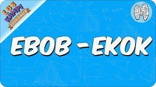 Ebob- Ekok | 2020 LGS Kampı