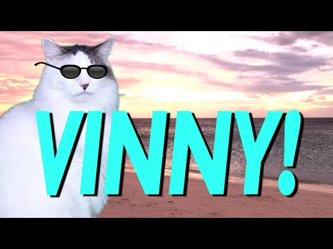 HAPPY BIRTHDAY VINNY EPIC CAT Happy Birthday Song YouTube