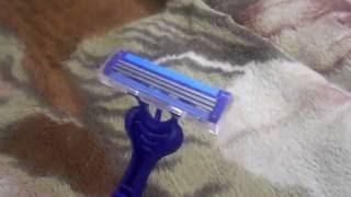 Guide #6 - Как побрить кота