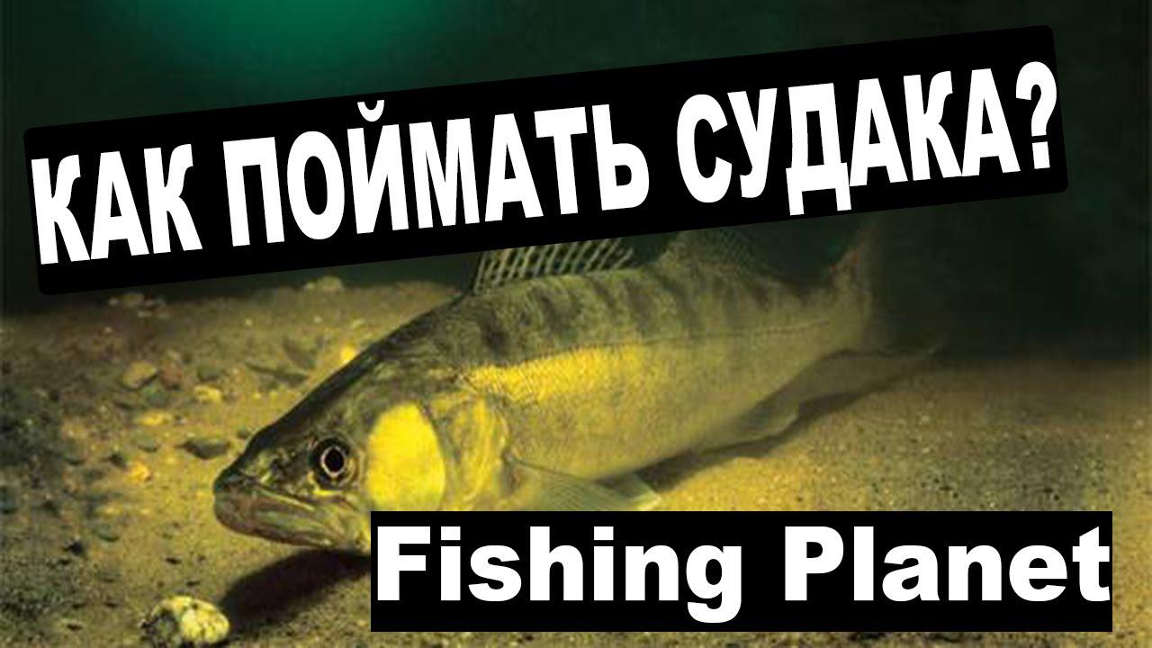 Fishing planet как сделать меч в майнкрафт - d2e