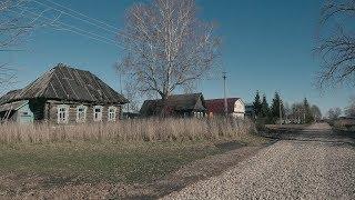 Какие дома в селе Вторусское / Старая деревня