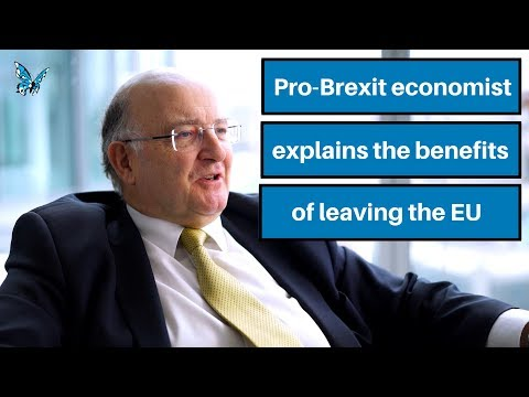 In conversation with Britain's leading pro-Brexit economist
