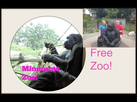 Travel vlog 3 MN ZOO & its free!