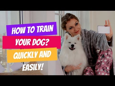 How To Train Your Puppy Quickly And Easily! | Complete Guide for Dog training and puppy training.