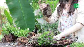 กระถางต้นไม้ จาก ฝาพัดลมเก่า : คอลัมน์ ลงมือ นิตยสารบ้านและสวน มิถุนายน 2557