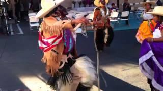 Danza de los rubios, medio año de la virgen de Santa Rosa de lima