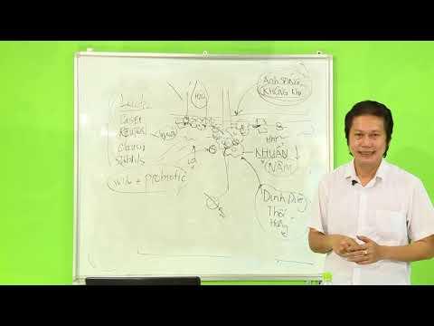 Chia sẻ kinh nghiệm trừ sâu theo phương pháp sinh học kiku bara - phần 7