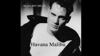 Black Boy Dream by Havana Malibu - (Blues / Jazz)
