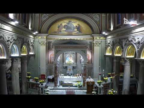 Kazanie - ks. Krystian Piotrowski SAC - Msza Święta przy grobie św. Wincentego Pallottiego