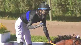 Vidéo de la course PMU PREMIO ST LEGER