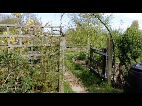 Garden Tour - Spring 2017