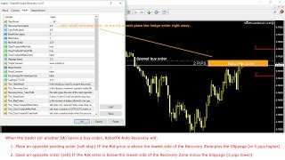 RobotFX Auto Recovery 3.0 - How to hedge a forex trade