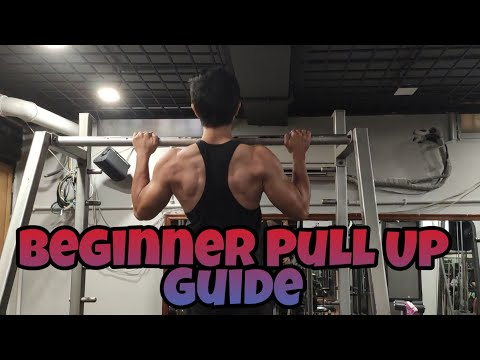 Can't do Pull Ups? | Just do this | Pull up Progressions for Beginners |Brandon Lee Fitness