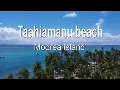 Taahiamanu Beach Moorea Island Dronestagram