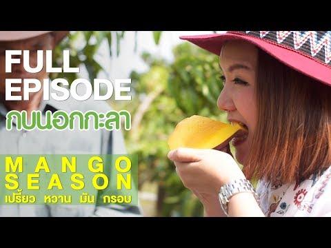 Mango season เปรี้ยว หวาน มัน กรอบ - Full - วันที่ 17 May 2018