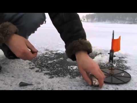 Как ловить щуку на жерлицу зимой? скачать