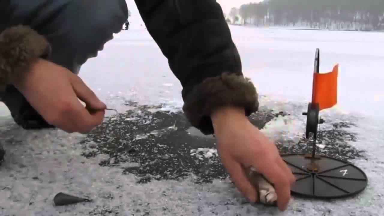Как ловить щуку на жерлицу зимой?