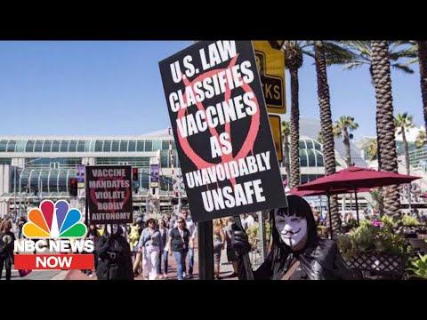 Anti-Vaccine Movement Takes Online Harassment Into The Real World | NBC News Now