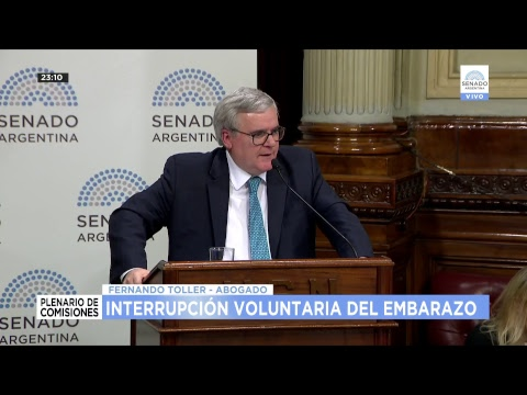 PLENARIO INTERRUPCION VOLUNTARIA DEL EMBARAZO 24-07-18